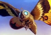 MOTHRA ( my favorite godzilla monster except godzilla)