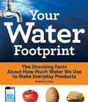 Your Water Footprint: The Shocking Facts About How Much Water We Use to Make Everyday Products by Stephen Leahy