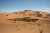 Sahara Desert-  What does it make you think of?