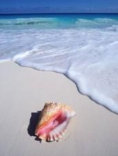 Relax en la playa es el más importante que hacer en Cancún