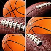 Mes sports préférés