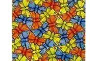 Butterfly tesselation