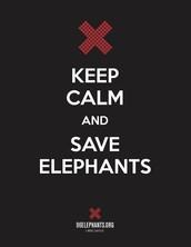 #ELPHIE Campaign - Tuesday, April 12th