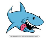 SHARK CHALLENGE!