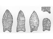 Paleoindian Period