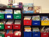 accessible classroom library