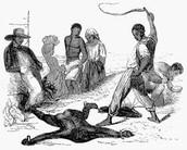 Slave Being Beaten