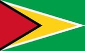 Guyanese flag