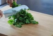 Pico el cilantro y cebolla