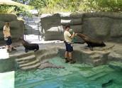El Zoo de Mendoza, Argentina