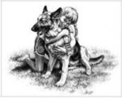 4-H Dog Practice