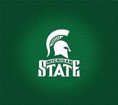 #1 Minnesota State University