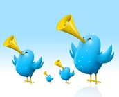 Step Five: Start to Tweet