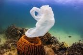 underwater polution