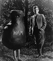 #HamGirl