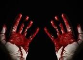 Bloodshed