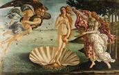 The birth of Venus Botticelli