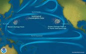 4.  What is the Great Pacific Garbage Patch?  What can we do here in Iowa to help decrease it, is it even possible?