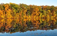 Huron River in Ann Arbor