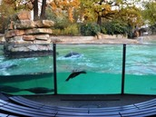 Berlin's Zoo