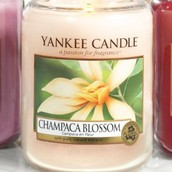 Finest Candle Fragrances