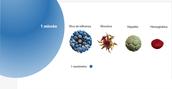 Filtración a Escala Nanoscópica