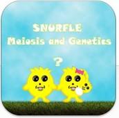 Snurfle Meiosis and Genetics