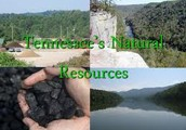 Natural Resources in The Great State of Tennessee
