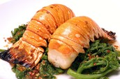 steamed lobster tail