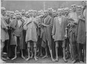 Group of Holocaust Prisoners