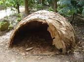 Aboriginal Huts