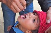 Oral Drops (OPV: Oral-administered Polio Vaccine)
