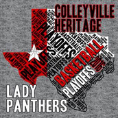 Lady Panther Basketball Update