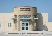 Collin County Animal Services