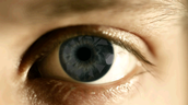 Eye's of the main character