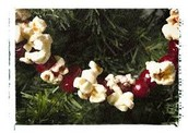 Garland for the tree