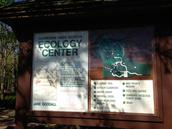 Eco-Buddies Field Trip