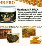 MR PRo (Madu Murni)