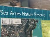 Sea acres