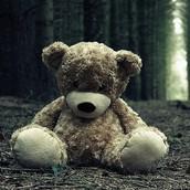 Sam's Teddy Bear