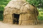 Lenape House