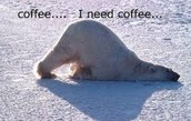 """Coffee... I need coffee..."""