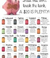 ~20 oils under $20~
