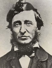 A letter to Henry David Thoreau,  and more