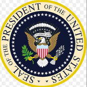 Formal Qualifications for President