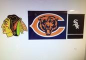 My favorite sports teams