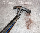 Why should you go with Carpet Cleaners London?