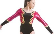 Chemise Long-Sleeved Leotard