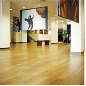 What is Bamboo Flooring?
