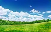 Beautiful and Cheap Land!!!